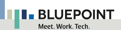 bluepoint-logo